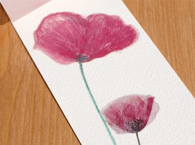 Éclosion d'une petite fleur