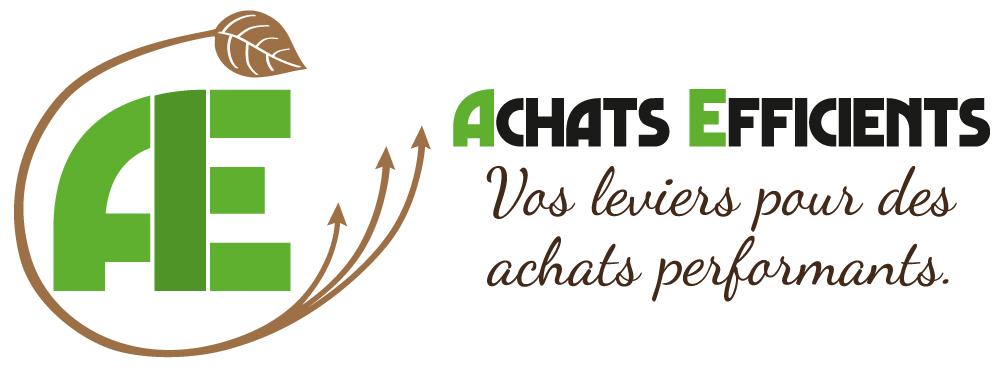 Logo Achats Efficients - Vos leviers pour des achats performants.